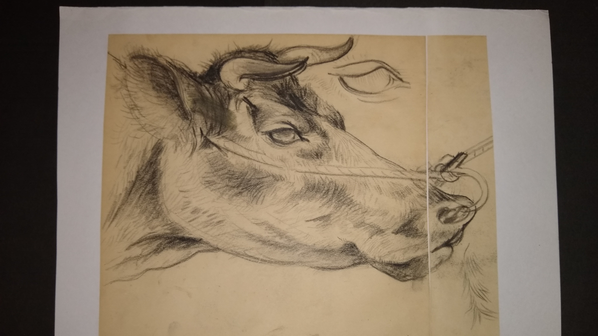 脇田畦牛の作品